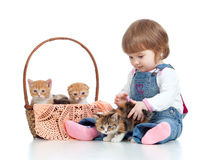 Smiling child sitting down by basket with kittens Royalty Free Stock Photos