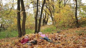 Smiling children jumping in pile of autumn leaves. Beautiful joyful siblings jumping in a pile of fallen leaves in autumn park. Cute teenage girl and her toddler stock video