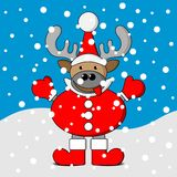 Smiling christmas reindeer with snow Royalty Free Stock Photo