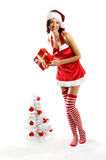 Smiling Christmas woman. Isolated on white background with a gift and a christmastree Royalty Free Stock Images