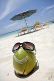 Smiling Coconut Head Stock Photos