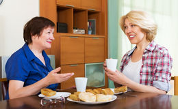 Smiling colleagues drinking tea and talking during pause for lun Royalty Free Stock Photo
