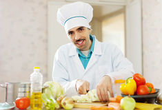 Smiling  cook does vegetarian lunch Royalty Free Stock Images