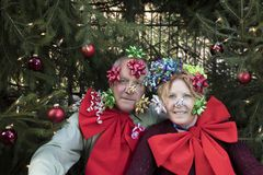 Smiling couple with bows under Christmas tree Stock Photos
