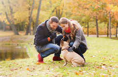 Smiling couple with dog in autumn park Royalty Free Stock Photos