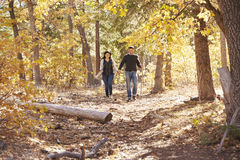 Smiling couple hike in forest holding hands in the distance Royalty Free Stock Photos