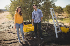 Smiling couple holding crate on sunny day at farm. Portrait of smiling couple holding crate on sunny day at farm Royalty Free Stock Photo