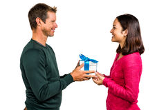 Smiling couple holding gift box Royalty Free Stock Photos