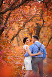 Smiling couple hugging in autumn park. Happy bride and groom in forest, outdoors Royalty Free Stock Images
