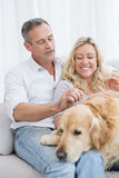 Smiling couple petting their golden retriever on the couch Stock Photos