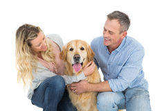 Smiling couple petting their golden retriever Royalty Free Stock Images
