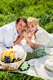 Smiling couple at a picnic Royalty Free Stock Photography
