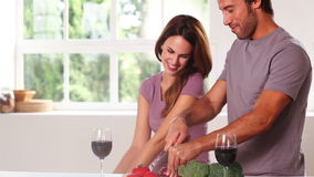 Smiling couple with red wine chopping vegetables Royalty Free Stock Photos