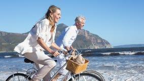 Smiling couple riding their bikes on the beach Royalty Free Stock Photos