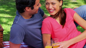 Smiling couple sitting on a blanket during a picnic stock video footage