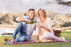 Smiling couple sitting on picnic blanket and pouring wine in glass Stock Image