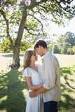 Smiling couple standing and embracing in park Royalty Free Stock Image