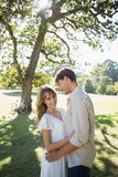 Smiling couple standing and embracing in park Royalty Free Stock Images
