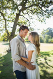Smiling couple standing and embracing in park Royalty Free Stock Photos