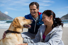Smiling couple with their pet dog. On beach Royalty Free Stock Photography