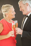 Smiling Couple Toasting Champagne Flutes Stock Photos