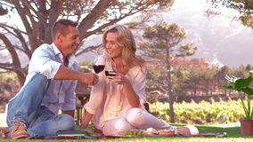 Smiling couple toasting on picnic blanket in slow motion. In grassland stock footage