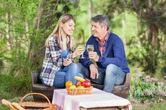 Smiling Couple Toasting Wine Glasses At Campsite. Smiling couple toasting wine glasses while sitting on chairs at campsite Royalty Free Stock Photos