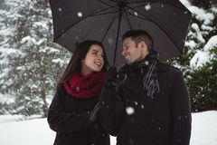 Smiling couple under umbrella standing in forest Royalty Free Stock Images