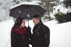Smiling couple under umbrella standing in forest Stock Photos