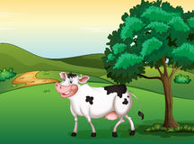 A smiling cow. Illustration of a smiling cow in a beautiful nature Stock Photo