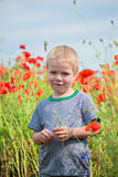 Smiling cute boy in field with red poppies Royalty Free Stock Photography