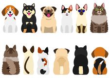 Smiling cute dogs and cats set. Set of cute and various dogs and cats in a row, front view and rear view set vector illustration