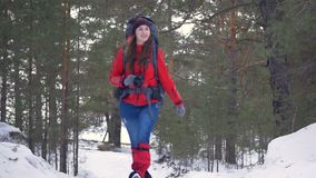 Smiling cute female tourist with photo camera walking in forest. HD. Smiling cute female tourist with photo camera walking in forest stock video