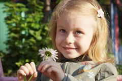 smiling cute little girl with camomile stock image