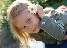 Smiling cute little girl with camomile royalty free stock photography