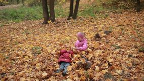 Carefree kids playing in a pile of fall leaves. Smiling cute toddler boy in warm clothes and his attractive teenage sister in eyeglasses jumping in large pile of stock footage