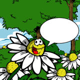 Smiling daisy with speech bubble Stock Photography