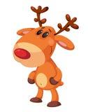 Smiling deer Royalty Free Stock Photo