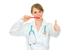 Smiling dentist female holding toothbrush Royalty Free Stock Photography