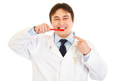 Smiling dentist pointing finger on toothbrush Stock Photography