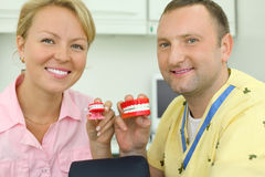 Smiling dentists keep two toy jaws Royalty Free Stock Image
