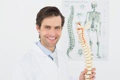 Smiling doctor holding skeleton model in office Stock Photo