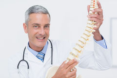 Smiling doctor showing anatomical spine Stock Photos