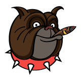 Smiling Dog with Cigar Stock Images