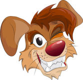 Smiling dog's head Stock Image