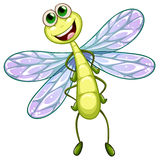 A smiling dragonfly Royalty Free Stock Photography