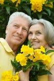 Smiling elder couple Stock Photos