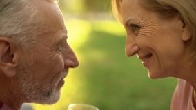 Smiling elderly couple looking at each other with love and tenderness, park date royalty free stock photography
