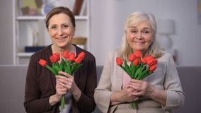 Smiling elderly women sniffing bouquet of tulips, happy mothers day, present. Stock footage stock video footage
