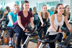 Smiling elderly and young women working out hard. Pleasant smiling elderly and young women working out hard in sport club Royalty Free Stock Photos